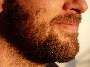 No shave November warehouse record