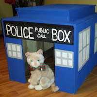 Recycled Wood Pallets Tardis Dog House